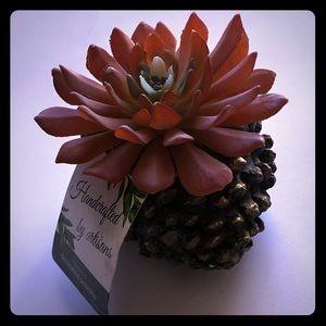 NWT Pinecone Flower Decor